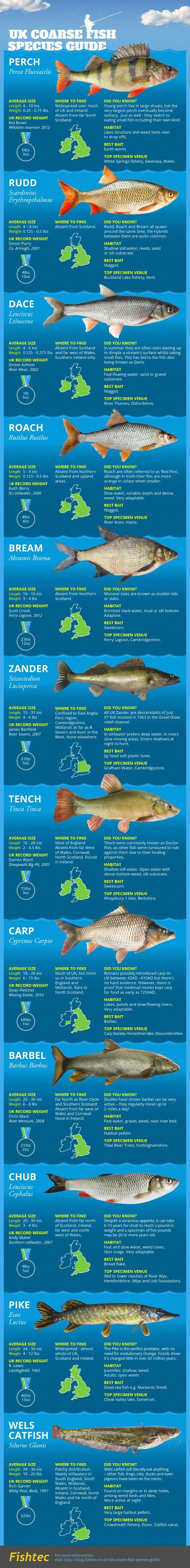 Freshwater fish facts - Uk Coarse Fish Species Guide Infographic