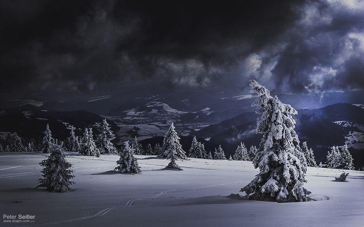 winter forest (The last monk - Posledný mních)