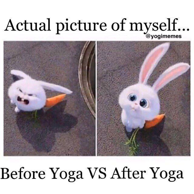 Memes Chistosos Graciosos Chistes Yoga Vodka Memes Humor
