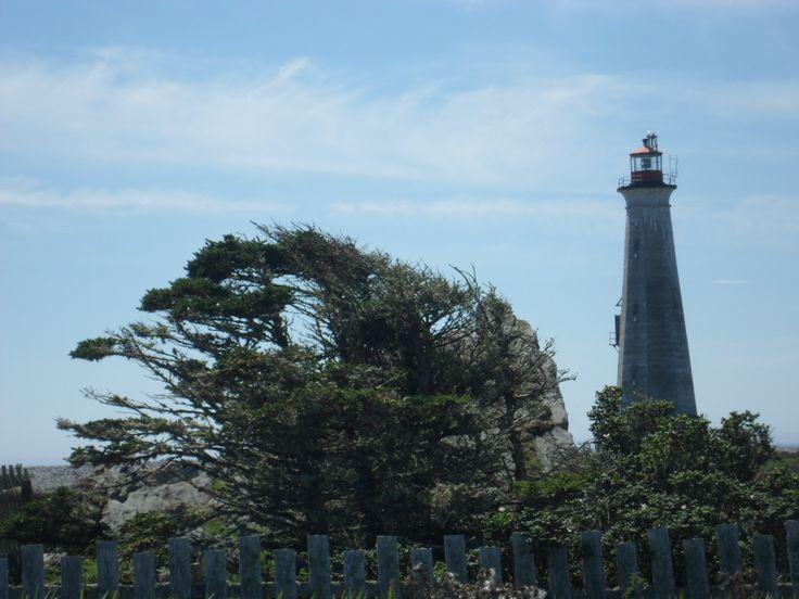 Cape Sable Light - The Cape - Cape Sable Island