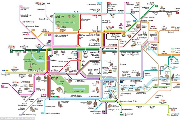Bus map: This diagram shows the major bus routes running through central London, which are...