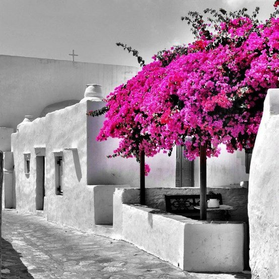 Sifnos,Greece