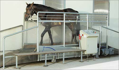Беговая дорожка для лошадей Horse Gym T3