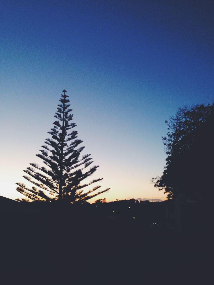 Late night sunrays