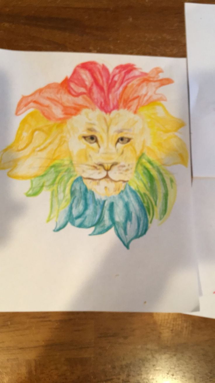 Lion art Super colorful  Easy pencil drawing