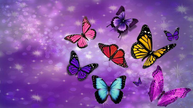 Purple Butterfly Heaven Pc Purple Wallpaper Pinterest