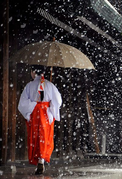 Credit: Franck Robichon/EPA Tokyo, Japan: A miko, or shrine maiden, walks as snow falls at Meiji Shrine