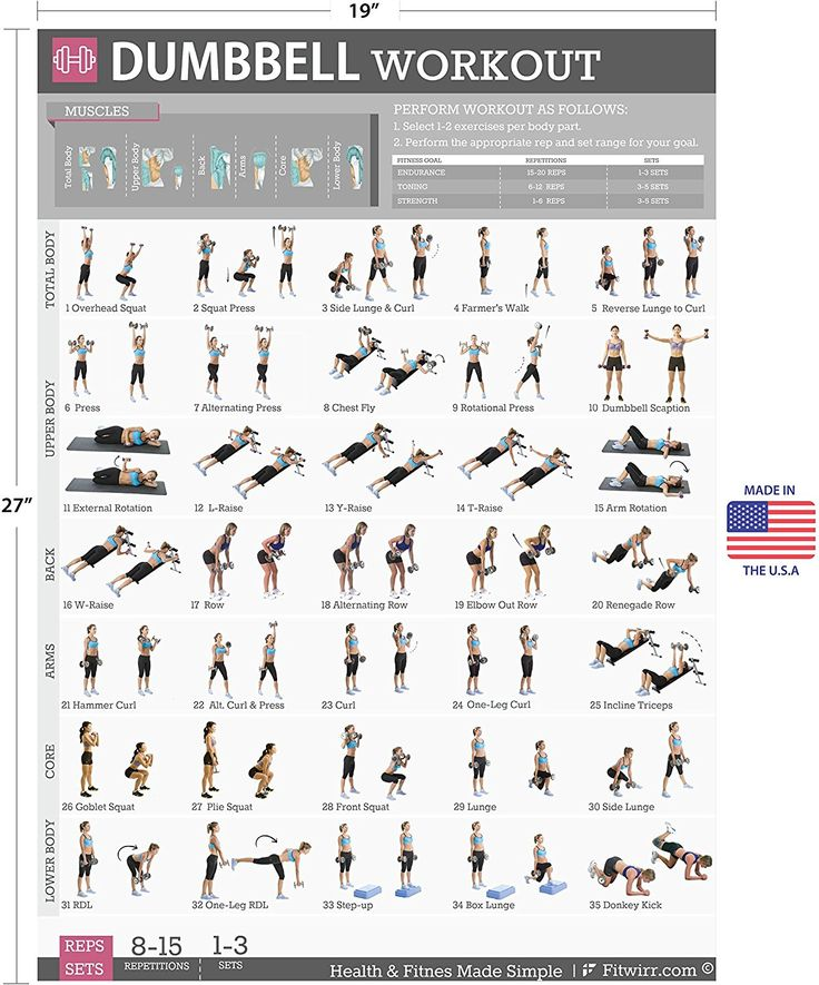 Free Weights Strength Training: Amazon.com : Dumbbell Exercises Workout Poster, NOW