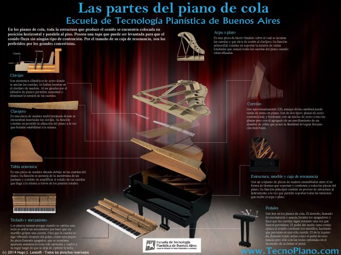 Infografía Partes Del Piano De Cola Tecnopiano Com Piano Piano De Cola Lecciones De Piano