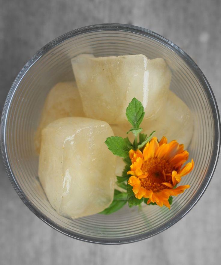 14 uses for calendula tea : calendula ice