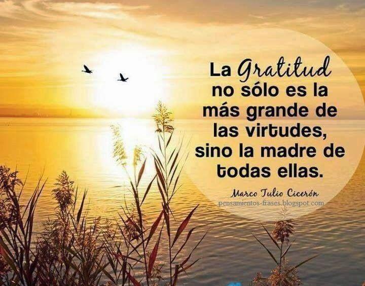 Frase De Vida Reflexiones: La Gratitud No Sólo Es La Más Grande De Las Virtudes, Sino