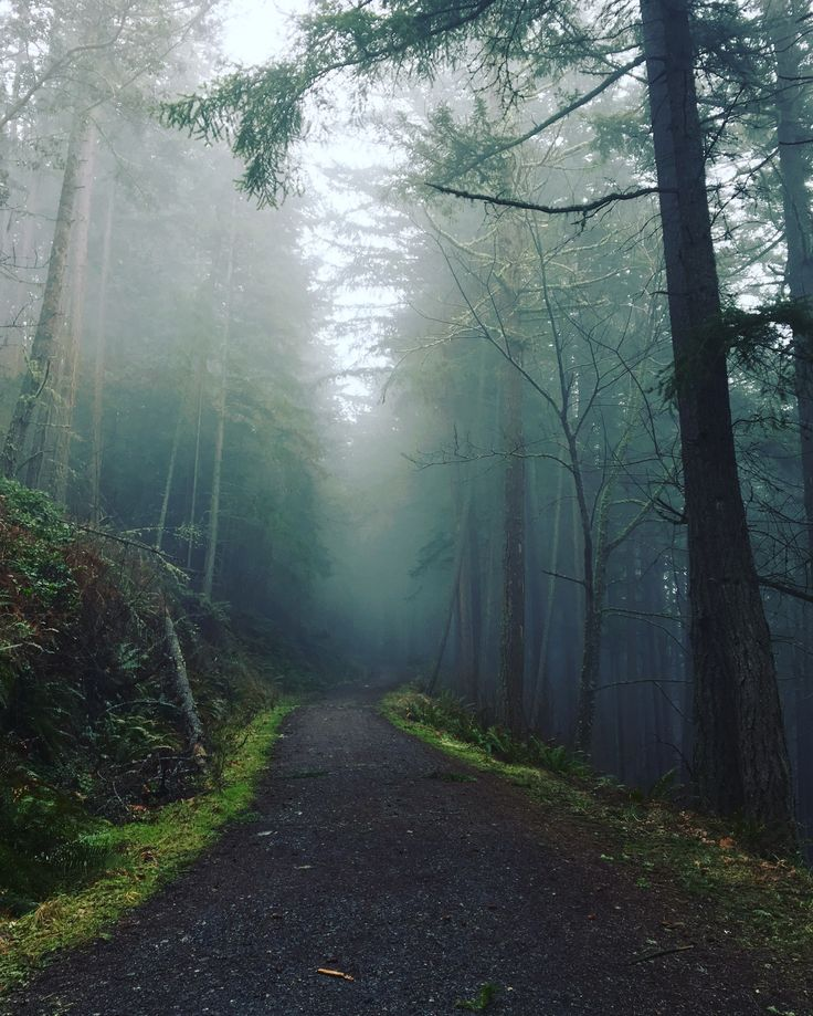 Fragrance Lake is a beautiful and fast 5.5 mile hike located 90 minutes north of Seattle in the city of Bellingham. The trail takes you past a small waterfall at the midway point and around a 0.75 …