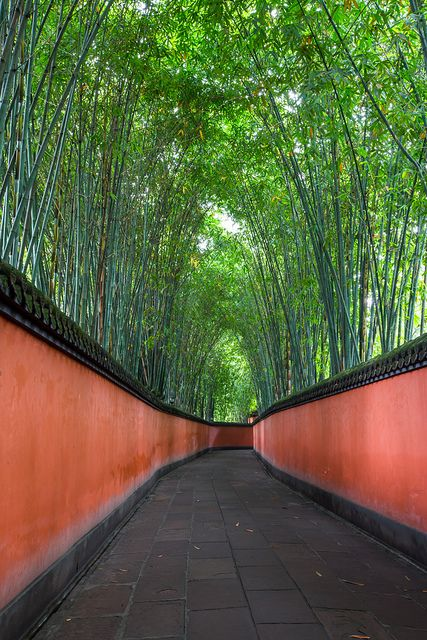 Walk this bamboo path on our luxury China trip?  竹林道 - Wu Hou Shrine, Chengdu City, China 成都武侯祠
