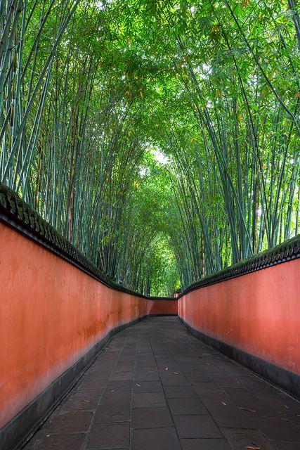 Walk this bamboo path on our luxury China trip?  竹林道 - Wu Hou Shrine, Chengdu City, China 成都武侯祠
