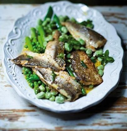 Panfried baby hake fillets on a bed of spring greens