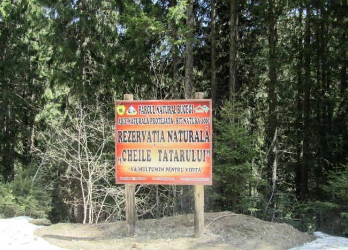 Cheile Tatarului sunt situate in Muntii Bucegi, zona Moroeni, pe Valea Ialomitei ...  Tatarului keys are located in Bucegi area Moroeni, Valea Ialomita after Bolboci  ... MORE DETAILS HERE