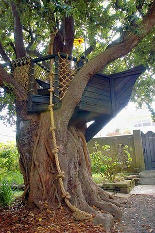 cool kids tree house ideas. barbara butlerextraordinary play structures for kidsship in a tree the giant rope climb cool kids house ideas