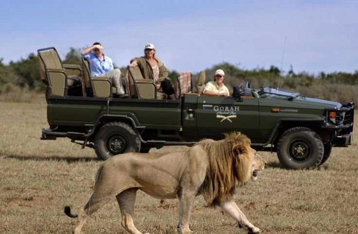 15% off 16-day tour: Enjoy seeing wildlife up close on daily game drives at the Gorah Elephant Camp. Explore the fabulous Garden Route in South Africa. Stay in the bustling city of Cape Town, then visit the magical Klein Karoo town of Oudtshoorn. Head to the beachside town of Plettenberg Bay and then friendly Port Elizabeth. Contact us for more >>