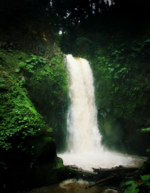 Waterfall Gardens | Costa Rica | ESPG via Flickr