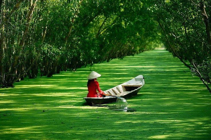 Mekong Deltası(Dokuz Ejder Nehir Deltası), güneybatıVietnam'da,Mekong Nehri'nin kollar halinde Güney Çin Denizi'ne döküldüğü bölgede, büyüleyici ve huzur veren bir doğa harikası. Su tarafından kaplanan bölgenin yüzölçümü de mevsimden mevsime değişiyor. #travel #uzakdoğu #siamtur #siamturizm #fareast #tatil #tur #tour #thailand #tayland