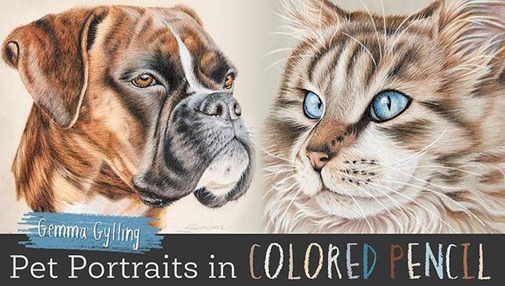 Learn to draw colored pencil pet portraits | Craftsy