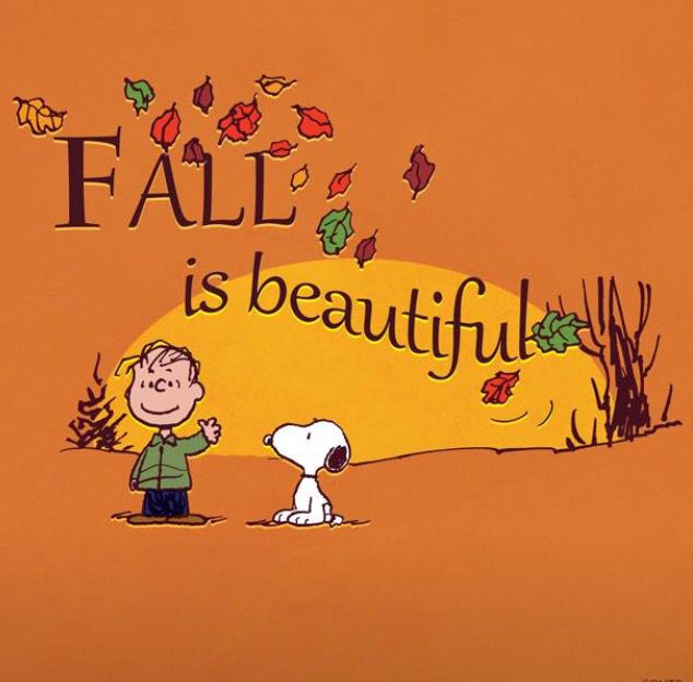 article critique of when peanuts fall The peanuts gang plays the autumn classic that we have come to know peanuts football: fall classic (official video) snoopy loading.