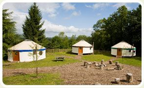 Yurt Camp Devon & Dartmoor
