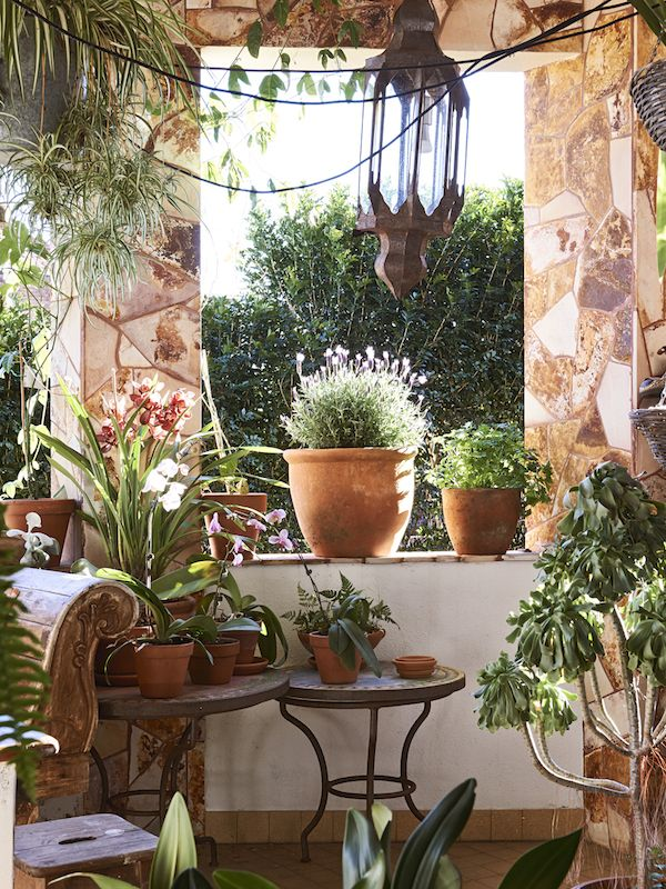 The Sydney home of Dion Antony, Anna Feller and Family. Photo - Eve Wilson. Production - Lucy Feagins on  / thedesignfiles.net / Magic Garden <3