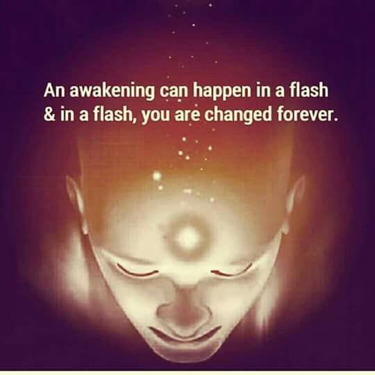 The minds flourishes in a flash ; a new perspective is born