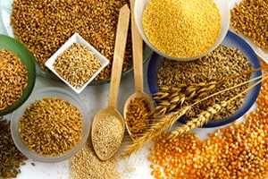 Imagen ilustrativa del artículo Beneficios para la salud de los cereales integrales