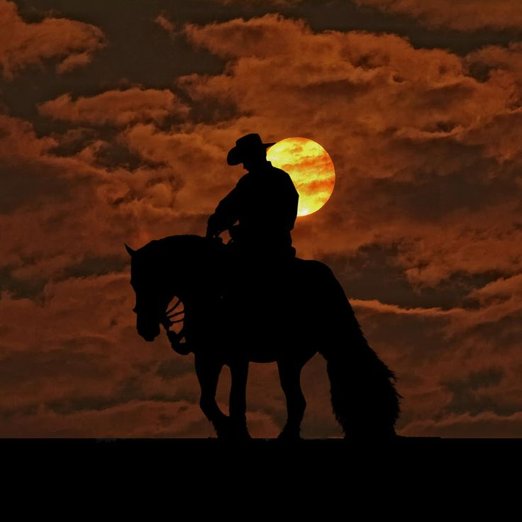 Into The Sunset Photograph by Laurie Comfort - Into The Sunset Fine Art Prints and Posters for Sale