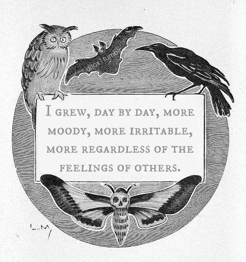 Bat quote Black and White feelings raven owl moth moody Edgar ...