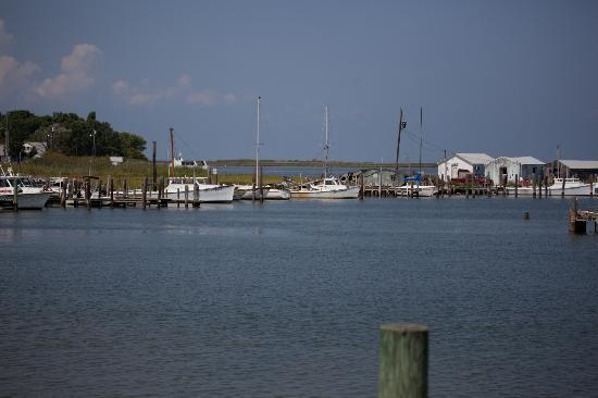 Best Time To Go Crabbing In Long Island