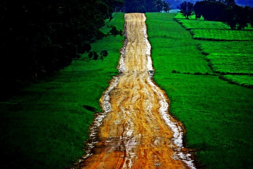 kilele:    Road to Magwa, Transkei in South Africa  Photo by Stewart White