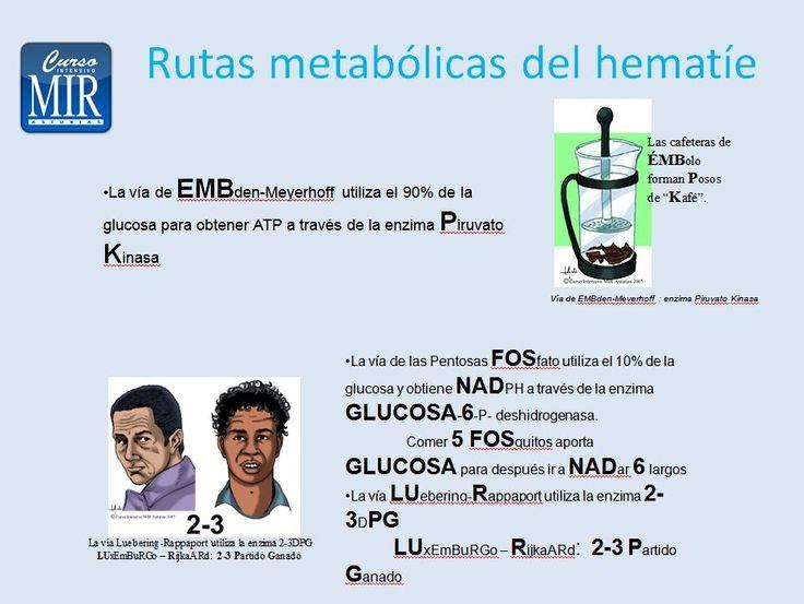 Rutas metabólicas del Hematíe . #Hematología