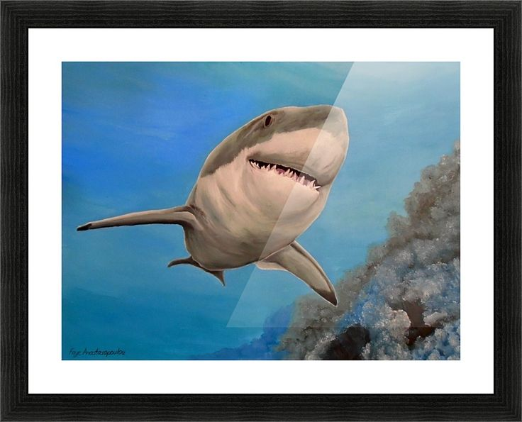 Framed Print, shark, painting,  underwater,world,scene,seascape,fish,wall,art,ocean,life,nature,sea,great white shark,tropical,deep,ocean,saltwater,wildlife,jaws,home,office,decor,beautiful,awesome,artwork,modern,aqua,blue,turquoise,beautiful,images,fine,art,oil,contemporary,realism,figurative,items,ideas,for sale,pictorem