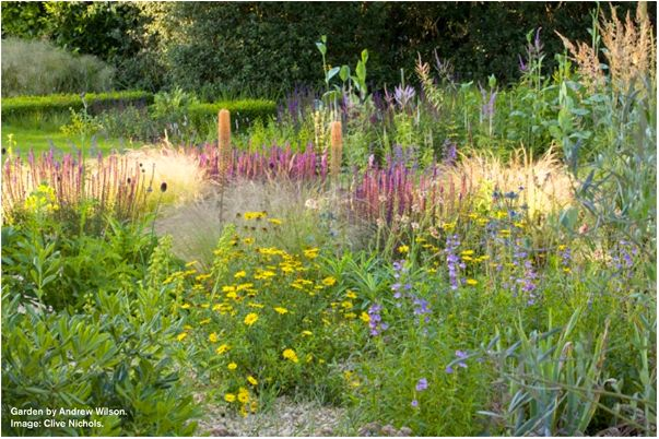 1000 Images About Andrew Wilson On Pinterest Gardens