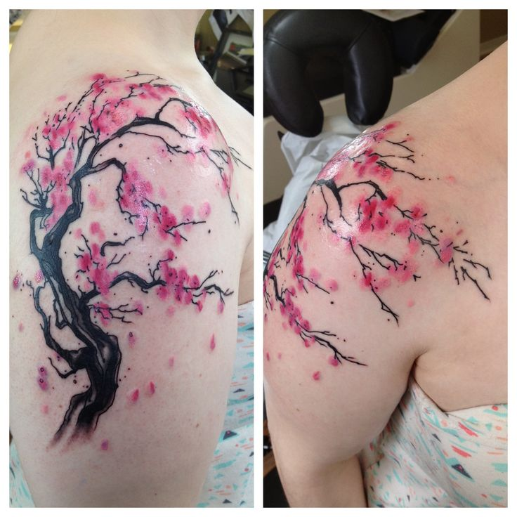 watercolor cherry blossom tattoo - Google Search