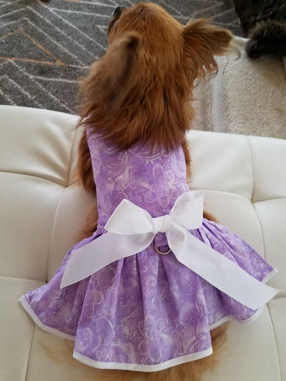 Dog Dress Spring Summer Dog Fancy Dog Puppy Pet Apparel
