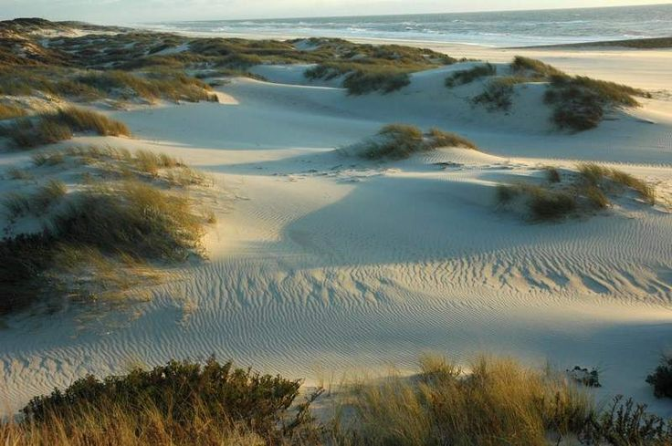 Located in the Nature Reserve of the Dunes of São Jacinto, this beach is one of the most beautiful Aveiro beaches