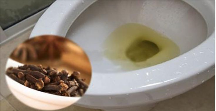 O truque mais fácil para você eliminar rapidamente o cheiro de urina do seu banheiro - e não passar mais vergonha com as suas visitas! | Cura pela Natureza