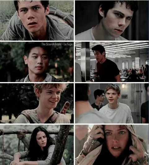 Thomas, Minho, Newt,Teresa from the Maze to the Scorch
