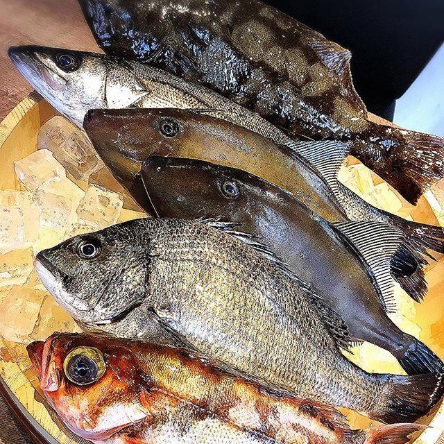 . おはようございます☀ . 今日はディナーシーマンを少しご紹介します🌙 . UPした写真は . 残念ながら既に完売してしまいましたが.. . 世界的にも綺麗とされる富山湾から届いたお魚達です!! . 上からヒラメ/スズキ/カワハギ/クロダイ/ハチメ🐟 . お魚ってこんなに美味しかったっけ!? . と思わず口にしてしまう程の美味しさでした(≧∇≦) . 和風にお刺身や煮付け、洋風にカルパッチョやアクアパッツァなどに美味しく調理されてお客様の胃袋に運ばれていきます^ - ^ . 近々ディナーメニュー大幅リニューアル予定ですので . ご期待下さい!! . #秋葉原 #ランチ #秋葉原ランチ #駅近 #美味しい #カレー #サラダ #スープ #ラッシー #ビュッフェ #飲み放題 #食べ放題 #昼飲み #昼ビール #昼ワイン #ママ友会 #女子会 #日替わり #週替り #ポキ #肉 #魚 #竹炭珈琲 #珈琲 #本格 #ゲリラ #ローストビーフ #デザート #富山 #お刺身