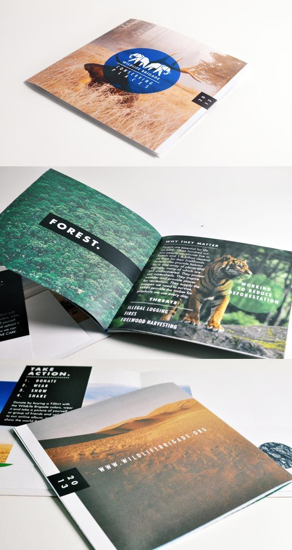 17 best images about brochure design layout on pinterest for Attractive brochure designs