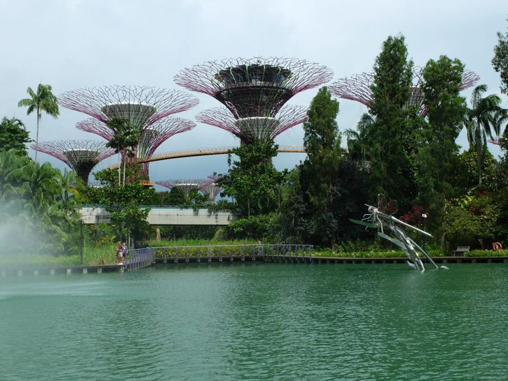 Singapour : Gardens by the bay, CLoud Forest