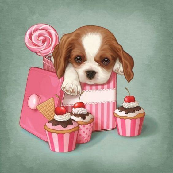 Картинки с днем рождения девушке красивые и прикольные с животными