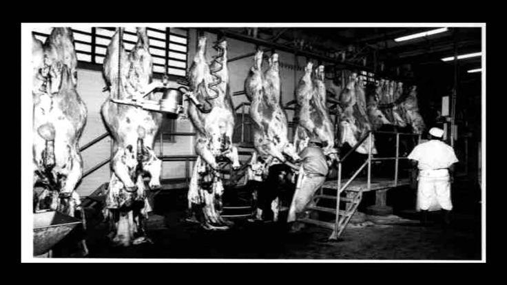 Historias de terror y leyendas urbanas 2 - El matadero