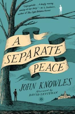 A SEPARATE PEACE by John Knowles.