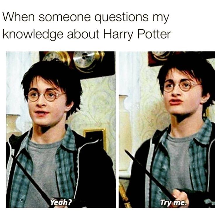 Are you a true Harry Potter Fan?