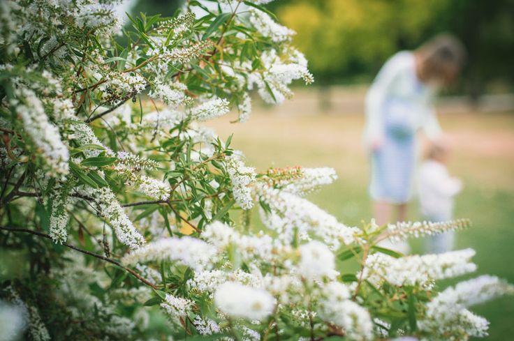 Séance Laetitia, Stéphane et Maëla, photo extérieur Bois de Vincennes, île de Reuilly et Île de Bercy, maman avec sa fille derrière des fleurs